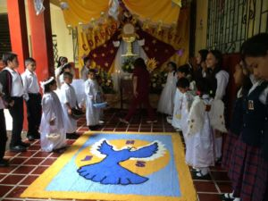 Alfombras Corpus Christi 2017 005